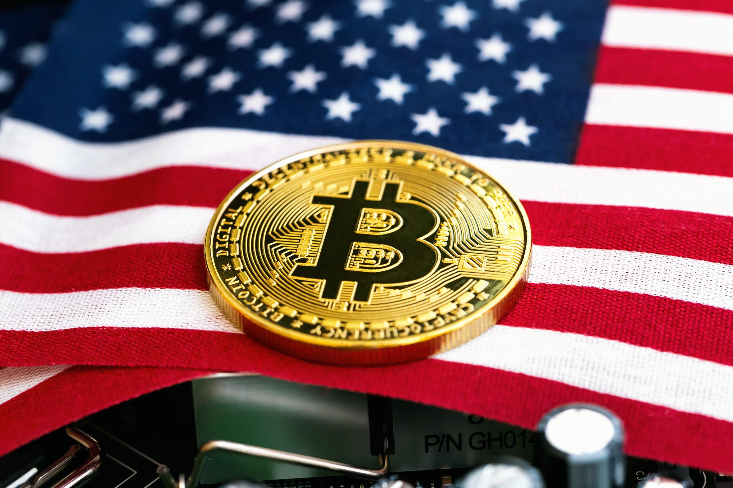 Gli investitori statunitensi vincono la gara: hanno ottenuto i guadagni maggiori in Bitcoin nel 2020