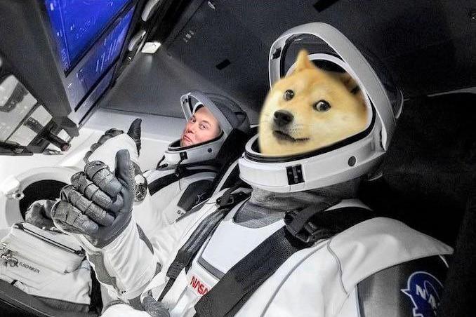 """Rilasciata la proposta sulle commissioni Dogecoin, contrassegnata come """"importante"""" da Elon Musk"""