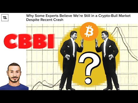 Crypto BITCOIN Bull Run Index