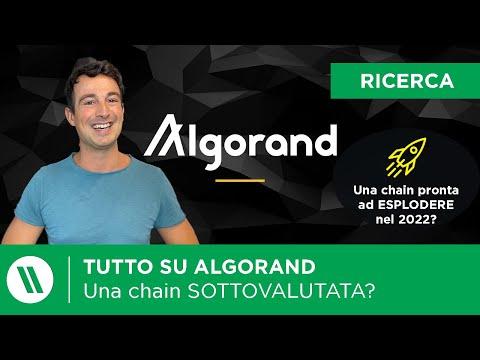 ALGORAND: Una blockchain SOTTOVALUTATA? | TUTTO quello che DEVI sapere